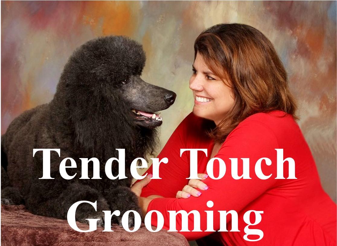 tendertouchj