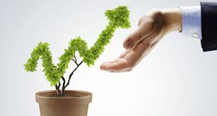 business flourish